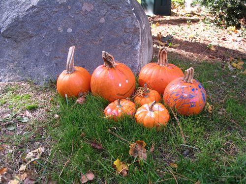 Pumpkins longmeadow 102210