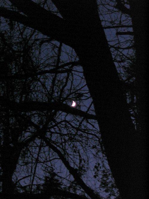 Moon 111110