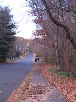 Couple walking 110710