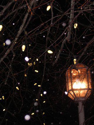 Snowy streetlight 012611