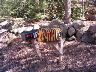 Tiger mailbox 040311.jpg