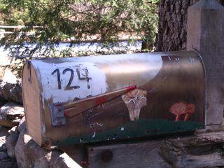 Fungi mushroom mailbox 040311