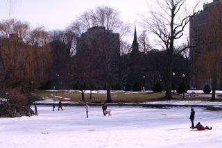 Public garden pond.jpg