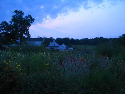 Codman farm evening 062811