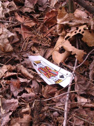 Playing card 041611