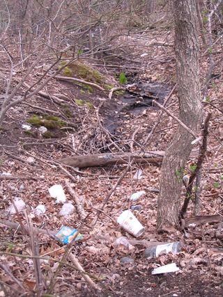 Garbage stream 041611