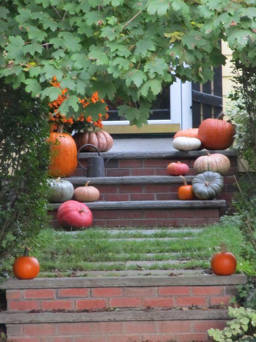 Pumpkins 100911