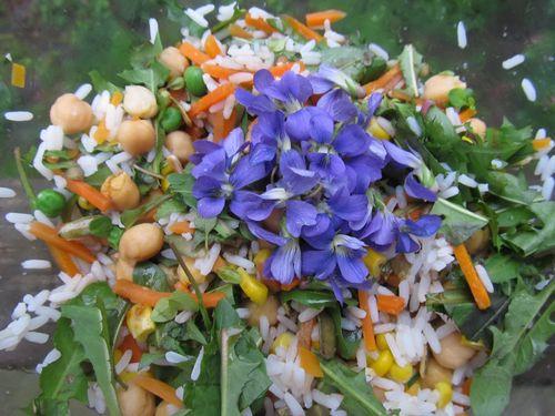 Dinner spring 2012