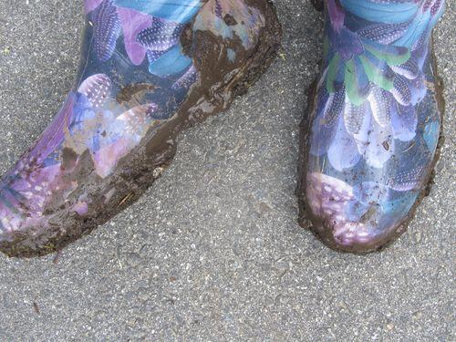 Muddy boots 060312