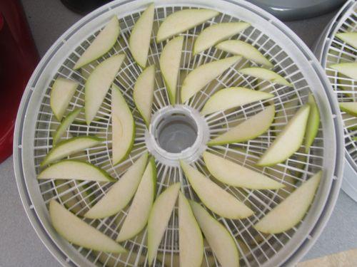 Pears dehydrator 123012