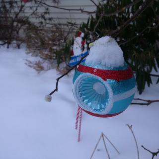Ornament in snow 12172016
