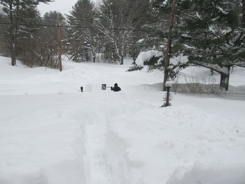 Alex shoveling 01272015